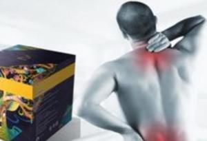 Artropant - ljekarna - ebay - kako funkcionira