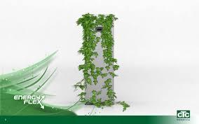 Ecoheat S - nuspojave - gdje kupiti - tablete