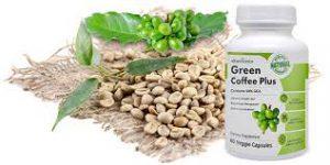 Green coffee plus - cijena - sastav - sastojci