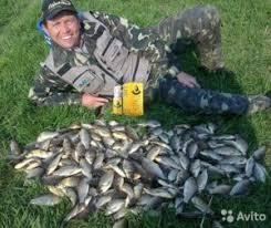 Fish xxl - forum - recenzije - cijena
