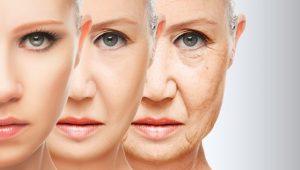 Anti Aging Cream - instrukcije - kako funkcionira - ljekarna