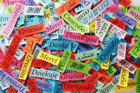 Ling Fluent - nuspojave - test - ljekarna