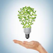 EcoEnergy Electricity Saver - Ljekarna - ebay - recenzije