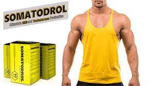 Somatodrol - instrukcije - Ljekarna - recenzije