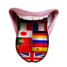 Alpha Lingmind - pomaže u učenju stranih jezika - ljekarna - sastojci - forum
