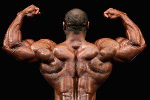 Amarok - za mišićnu masu - kako funkcionira - ljekarna - test