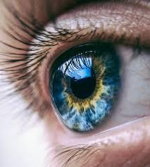 Oftalmax - kapi za oči - ljekarna - gdje kupiti - Amazon