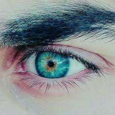 Oftalmax - kapi za oči - tablete - instrukcije - cijena