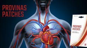 Provinas Patches  - za hipertenziju – kako funckcionira – instrukcije  – ebay
